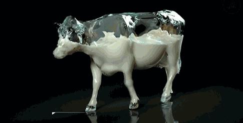 乳品基础知识